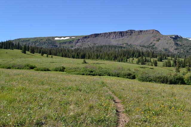 meadow below Flattop Mountain