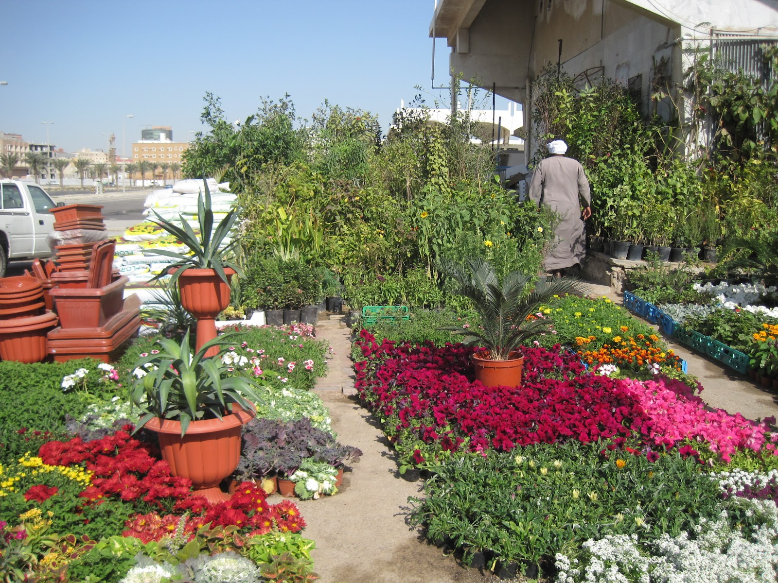 Image Result For Home Garden Khobar