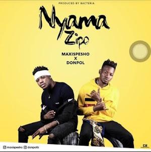 Download Mp3   Maxispesho ft Donpol - Nyama Zipo