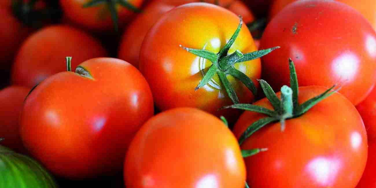 Pria Wajib Baca!! Rebusan Tomat Ampuh Untuk Mencegah Kanker Yang Dialami Para Pria!!!