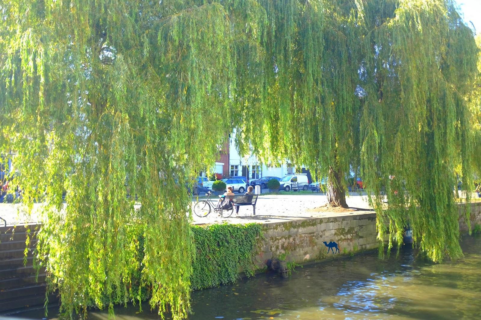 Le Chameau Bleu - Gand au mois d'octobre Week end à Gand Belgique
