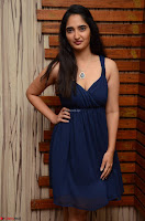 Radhika Mehrotra in a Deep neck Sleeveless Blue Dress at Mirchi Music Awards South 2017 ~  Exclusive Celebrities Galleries 068.jpg