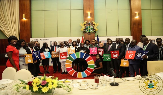 """Help Realise And Implement 17 UN SDGs"" – President Akufo-Addo Tasks Ghanaian CEOS"
