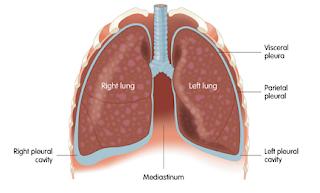 www.mesothelioma.uk.com