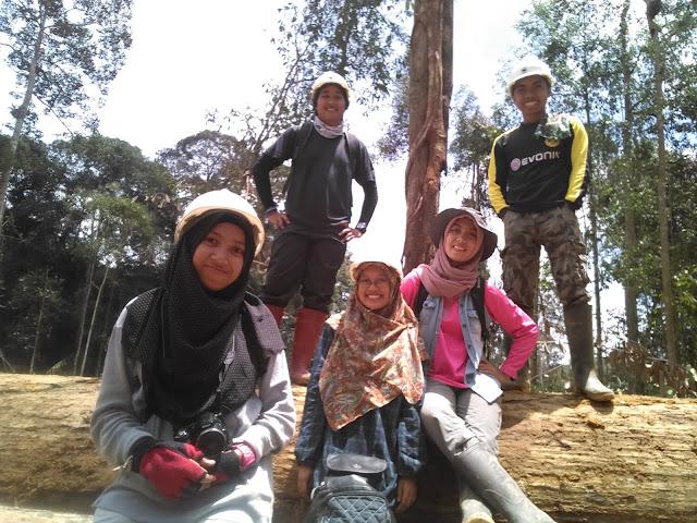 Laporan Kegiatan Praktek Kerja Lapang (PKL) Pengelolaan Hutan Alam di PT INHUTANI I UMH Meraang, Kabupaten Berau, Kalimantan Timur