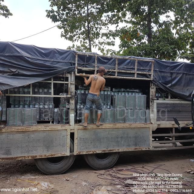 Xuất lô hàng F10 ra Phú Quốc