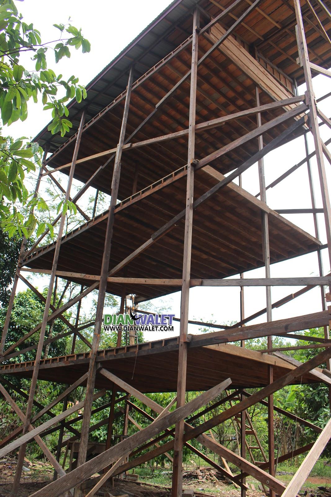 Rumah Sarang Burung Walet Dari Rangka Ulin  DIAN WALET