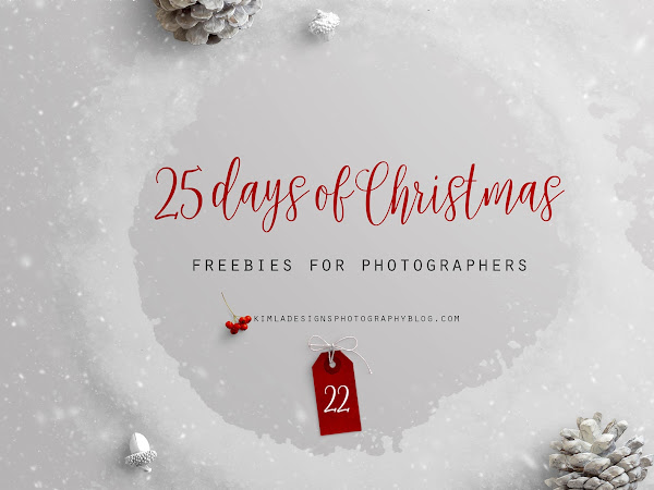 25 Days of Christmas Freebies for Photographers Day 22nd