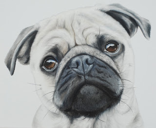 Pet Portrait Pug oil on canvas