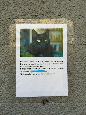 Lost cat sign in Bergamo.