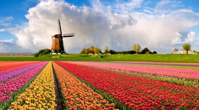 Profil Negara Belanda: Keadaan Alam, Budaya, Perekonomian, Penduduk dan Bentuk Pemerintahan
