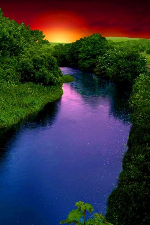 Free photo: Flowing River - Flowing, Jungle, Lake - Free ... |Beautiful River Photography