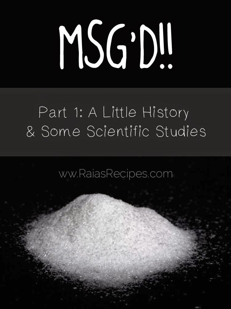 MSG'D!! Part 1: A Little History and Some Scientific Studies | www.RaiasRecipes.com