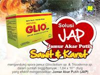 Agensia Hayati Gliocladium(GLIO) - Solusi Mengatasi Jamur Akar Putih Pada Tanaman Karet