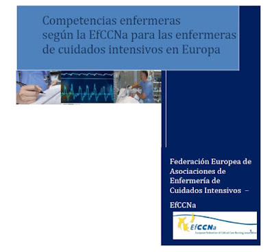 http://seeiuc.org/images/pdf/competencias_enfermeras.pdf