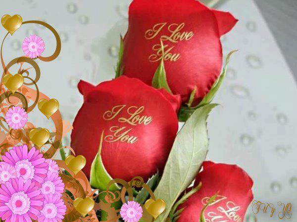 Rosas con mensaje de amor