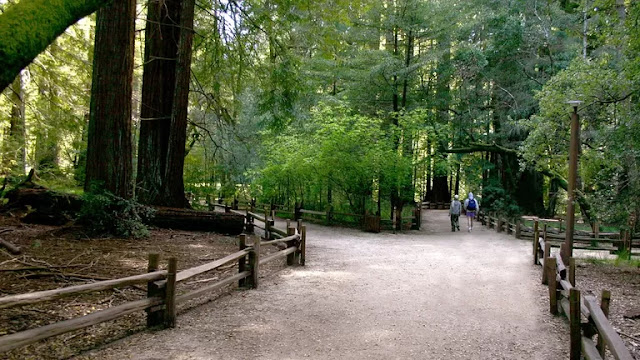 Scotts Valley Vacation Packages, Flight and Hotel Deals
