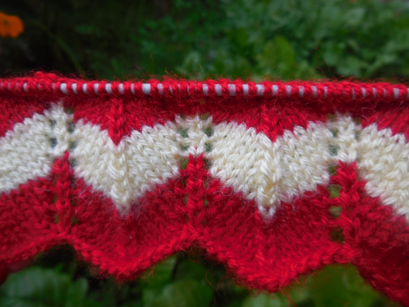 Two Color Knitting Pattern | Knitting Pattern | Kiran The Knitter ...