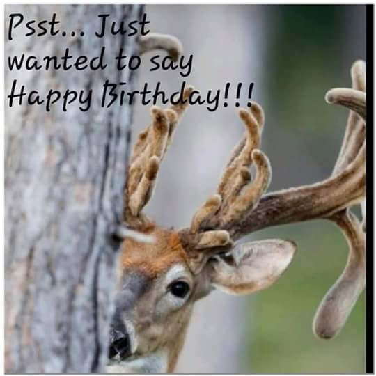 A Dixie Lady Deer Hunter: If It's Your Birthday