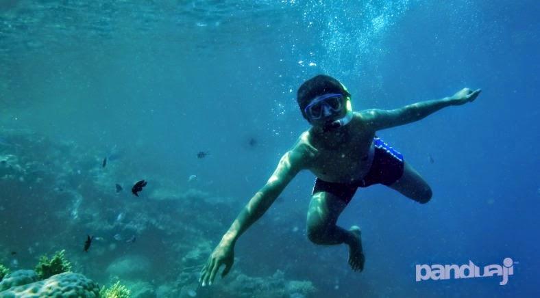 Snorkling di Pulau Besar