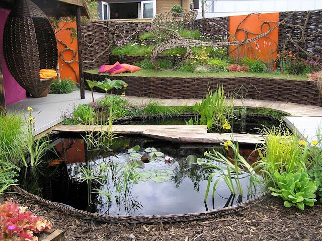 małe oczko wodne, wiklina w ogrodzie