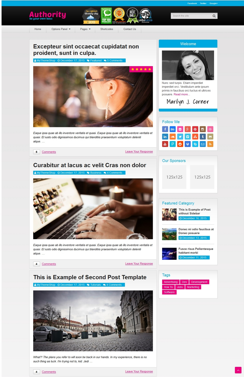 Authority Wordpress Theme