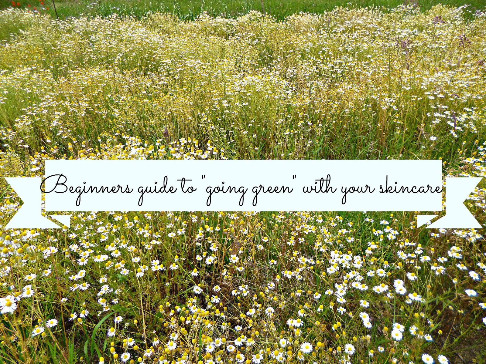 "Beginners guide to going ""green"" with your skincare"