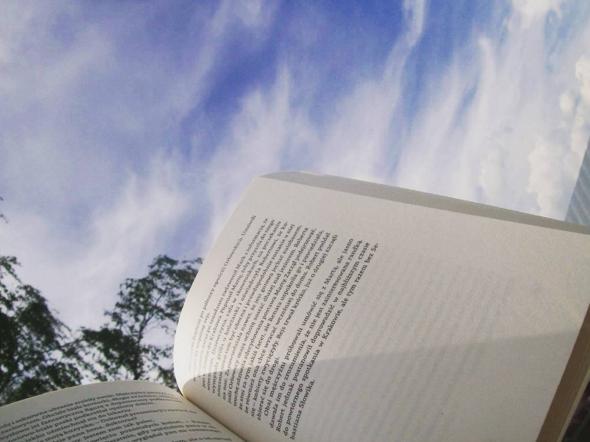 20 książek, które chciałabym przeczytać #1