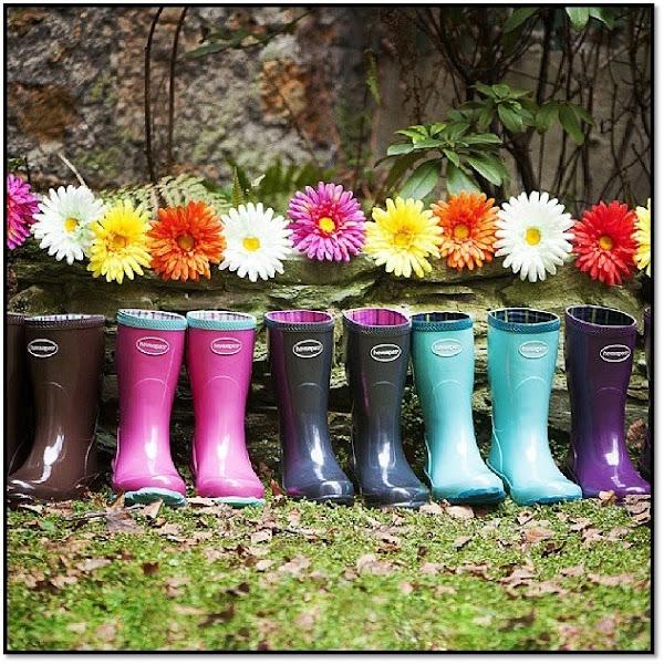 Bottes de pluie Havaïanas basses caoutchouc gamme couleur