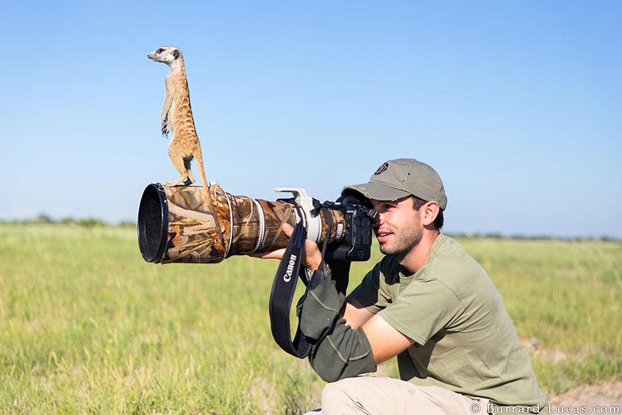 doğa-fotoğrafçılarının-unutulmaz-en-iyi_anlari_7