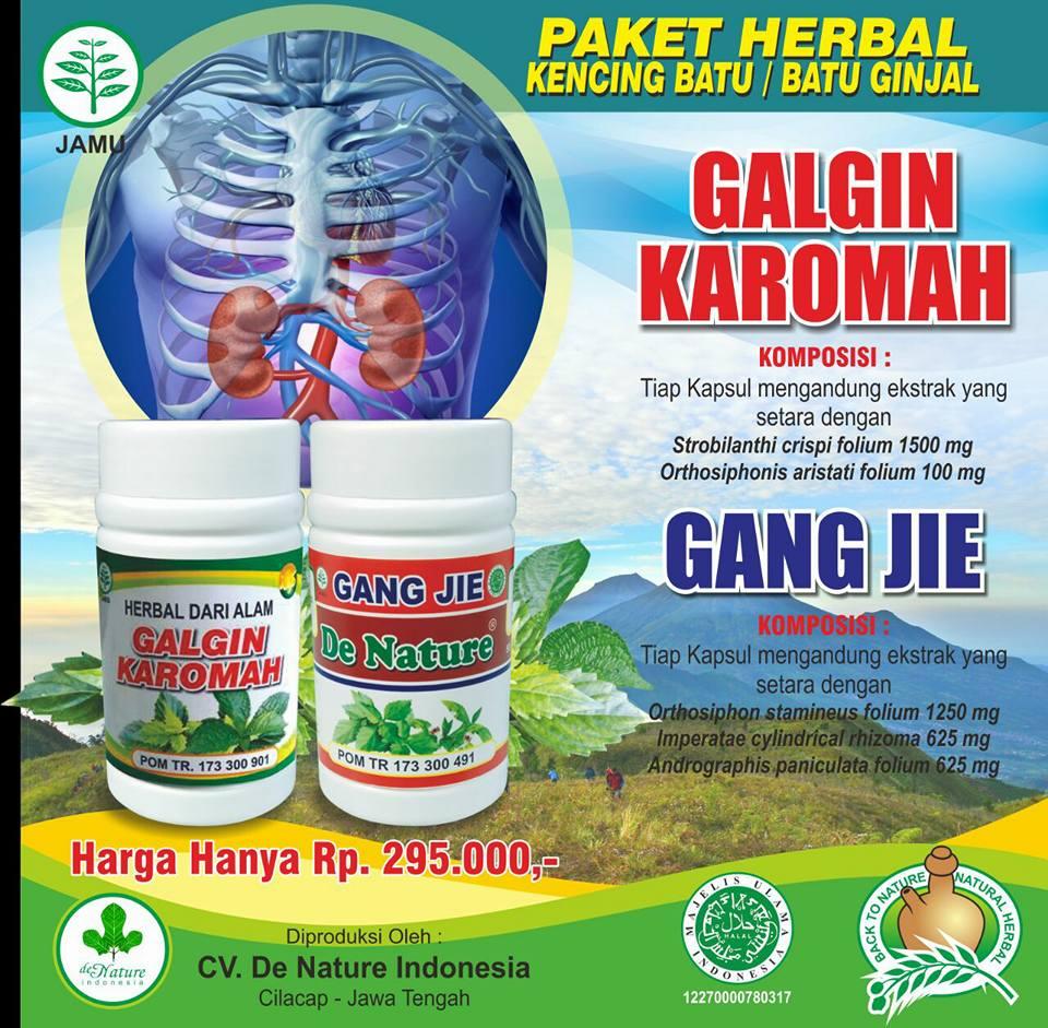 Obat Batu Ginjal Herbal Alami