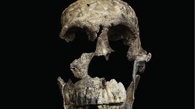 Αποδείξεις ότι ο Homo sapiens μοιραζόταν τον κόσμο και με «άλλο είδος»