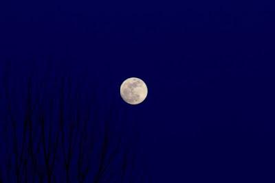 eastern sky, March full moonrise