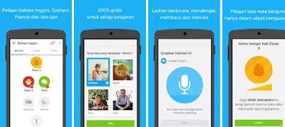 5. Duolingo