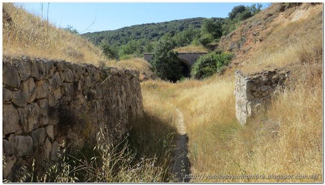 Senda entre la trinchera del trazado ferroviario