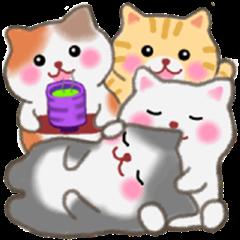 Four plump cats 6