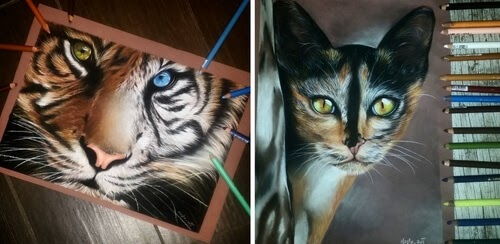 00-Majla-Colorful-Precise-and-Realistic-Animal-Drawings-www-designstack-co