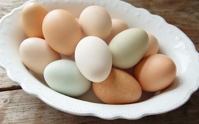 telur sehat untuk mengatasi rambut rontok