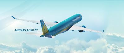 Máy bay của hãng Vietnam Airlines phải quay đầu vì va phải chim