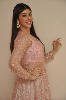 Actress Aditi Singh Latest Stills in Designer Dress at Guppedantha Prema Pressmeet 0018.jpg