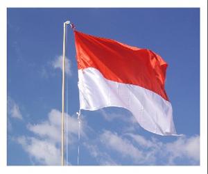 Download Contoh Naskah Pidato & Susunan Upacara Bendera Lengkap