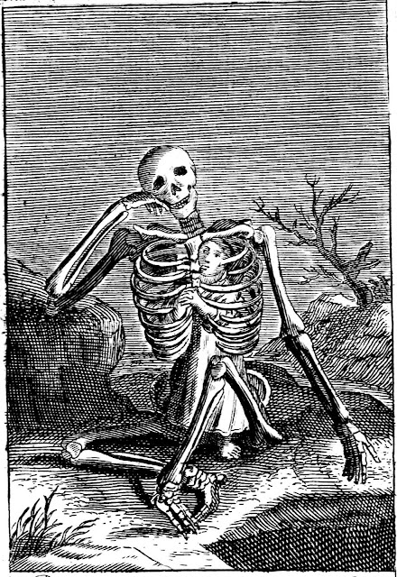 1683 school book skeleton