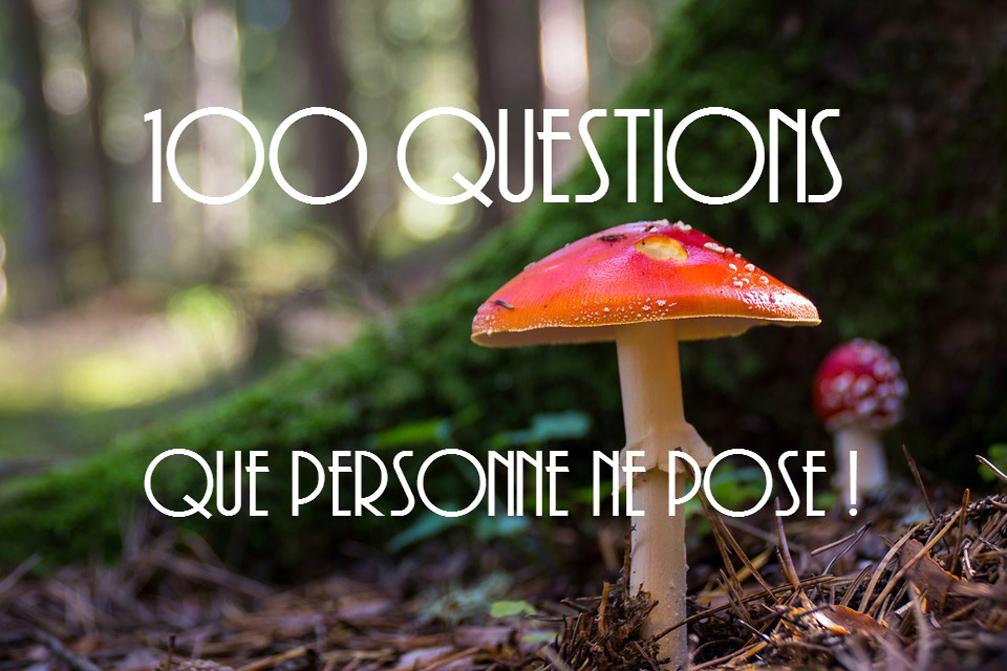 TAG 100 questions que personne ne pose!