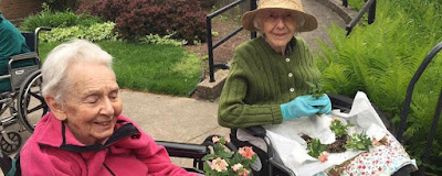 Spring Has Sprung: The Healing Power of Being Outdoors for Seniors