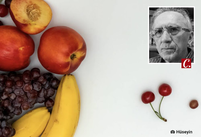 ambiente de leitura carlos romero chico viana frutas amor as frutas sabor gosto peculiaridades