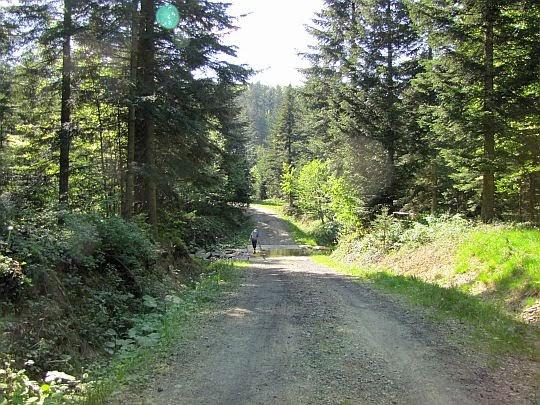 Droga przez dolinę.