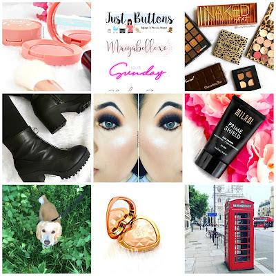 emmy writes about blog, blogger instagram