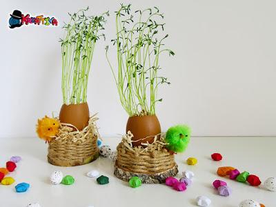 gusci di uova con germogli di lenticchie