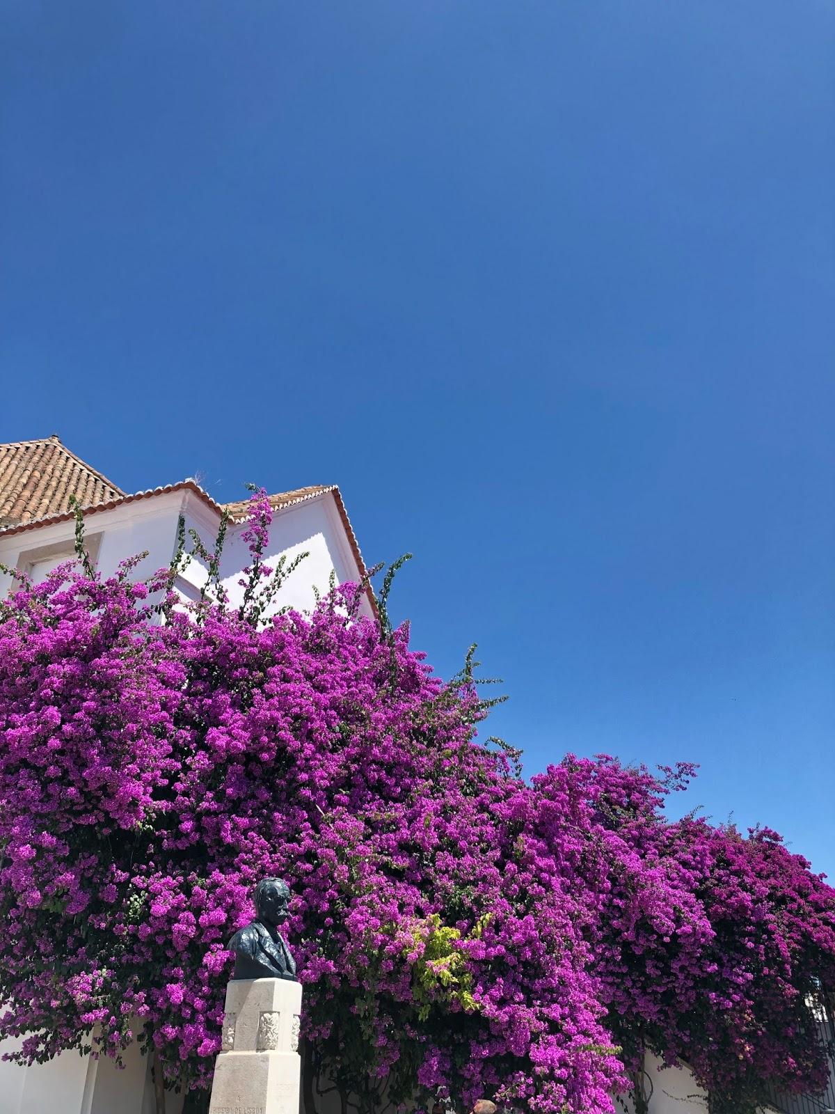 Lisbon, Portugalsko, ejnets.com