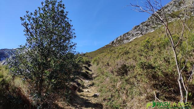Sendero por la ladera norte de la Patana